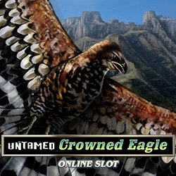 Untamed Crowned Eagle_1
