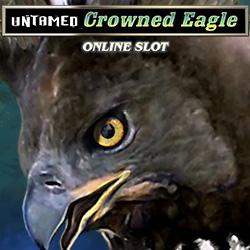 Untamed Crowned Eagle_4