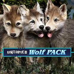 WolfPackPays_2