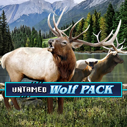 WolfPackPays_4